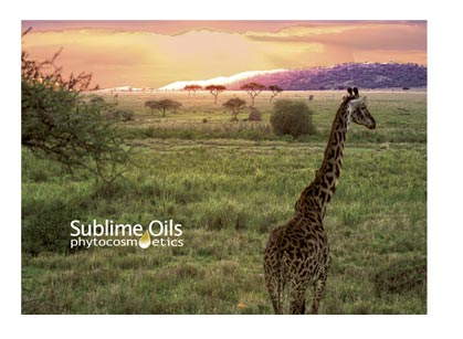sublime-oils
